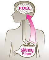 Η επιστήμη πίσω από το Skinny Fiber